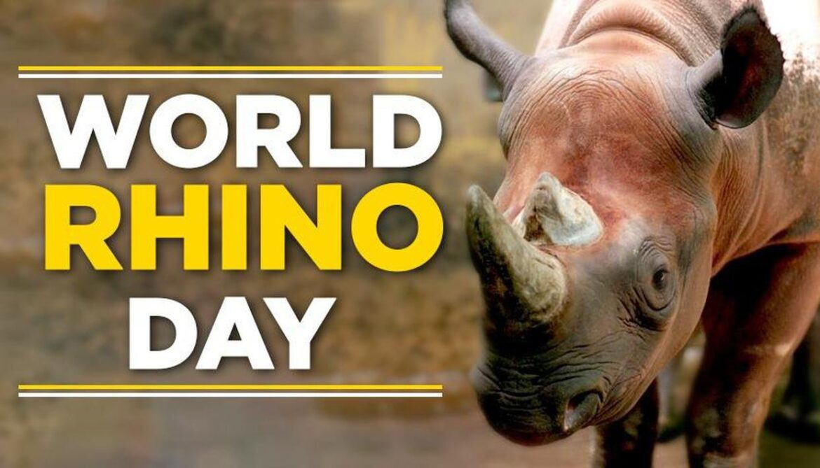 World Rhino Day: Centre launches National Conservation strategy for endangered one-horned Rhino