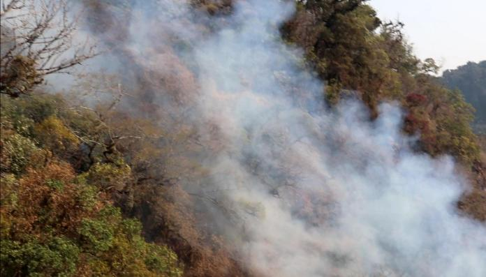 Major Fire at Shirui peak in Manipur continues on Day 3